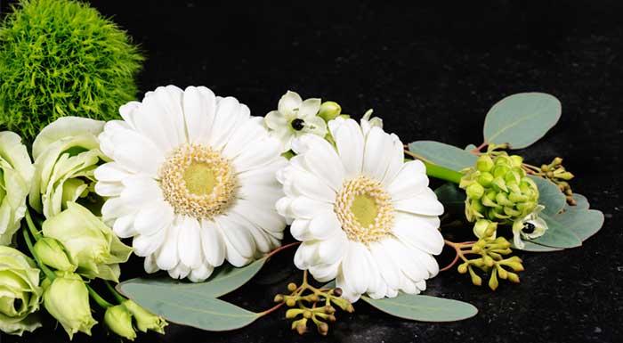 Sympathy Flowers Canberra